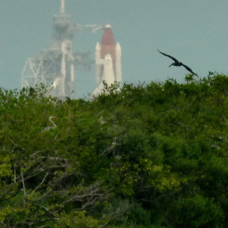 Impressionistic View of Endeavour at the Pad from the NASA causeway
